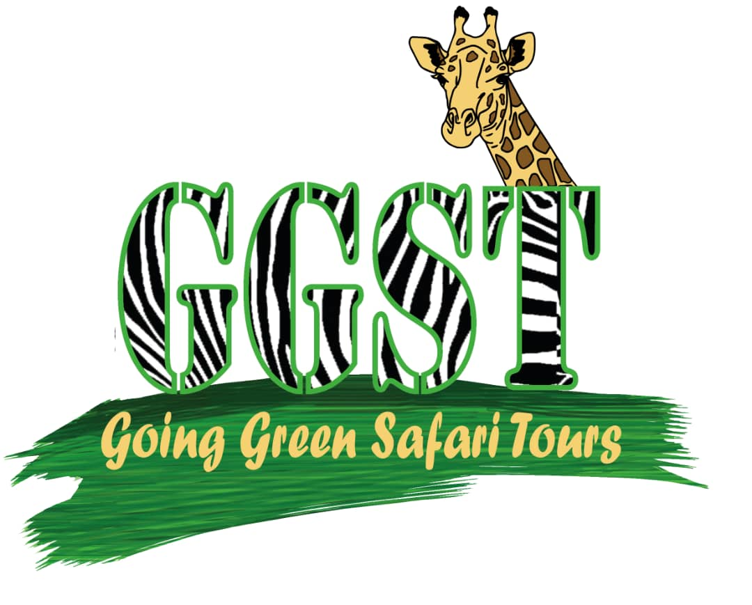 Going Green Safari Tours